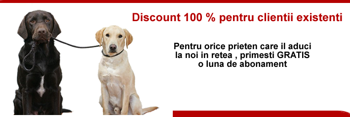 Discount 100 %
